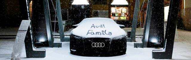 AudiFamily_1400x438.jpeg